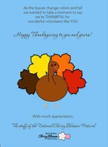 Volunteer Thanksgiving