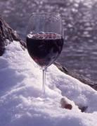 wine snow