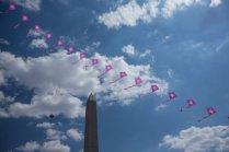Blossom Kite Festival
